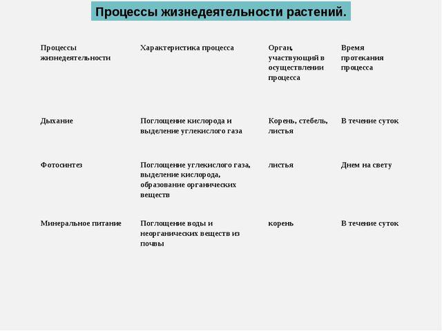 Процессы жизнедеятельности растений. Процессы жизнедеятельностиХарактеристик...