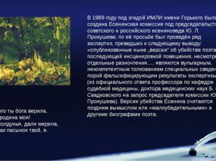 В 1989 году под эгидой ИМЛИ имени Горького была создана Есенинская комиссия п