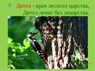 Дятел - врач лесного царства, Дятел лечит без лекарства. Д
