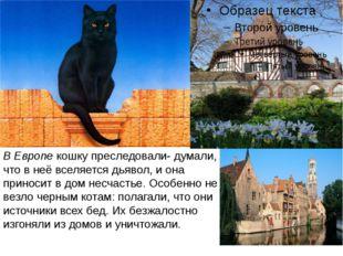 В Европе кошку преследовали- думали, что в неё вселяется дьявол, и она принос