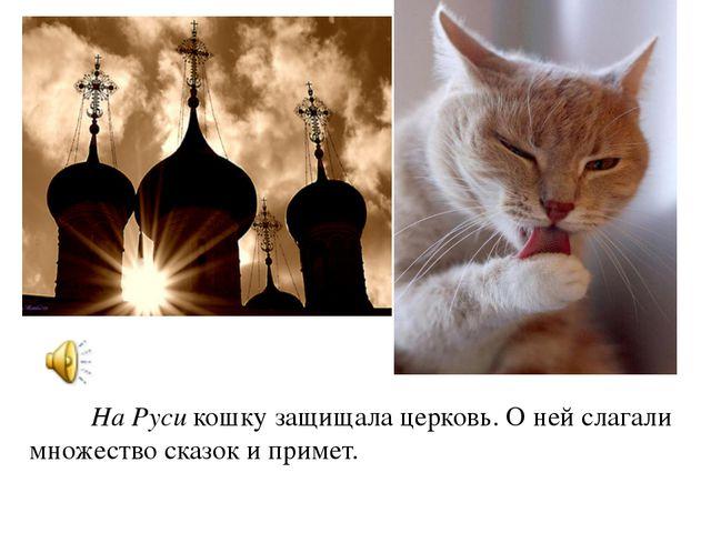 На Руси кошку защищала церковь. О ней слагали множество сказок и примет.