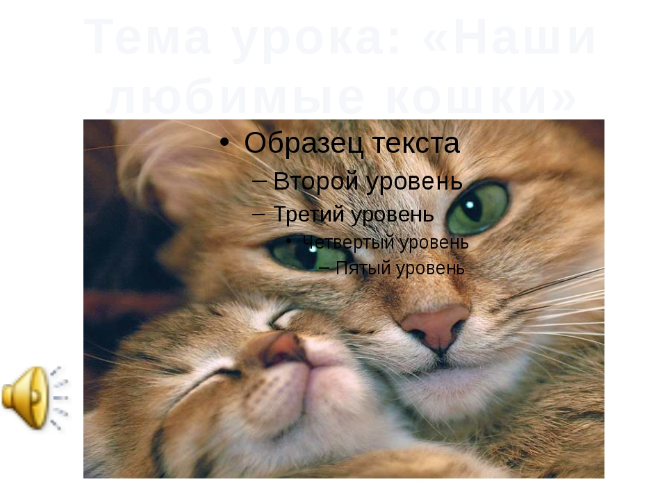 ЭТО КОШКА Тема урока: «Наши любимые кошки»
