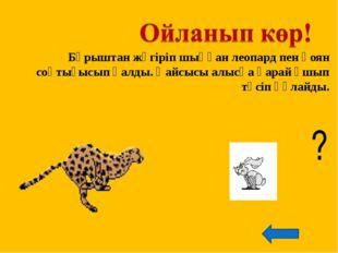 Бұрыштан жүгіріп шыққан леопард пен қоян соқтығысып қалды. Қайсысы алысқа қар