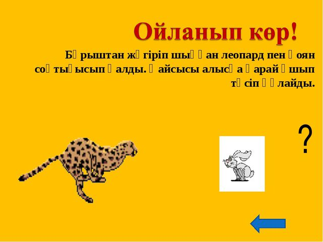 Бұрыштан жүгіріп шыққан леопард пен қоян соқтығысып қалды. Қайсысы алысқа қар...