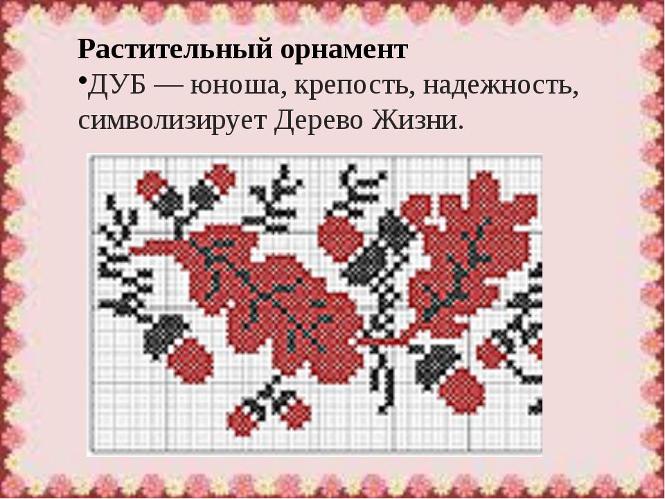 Растительный орнамент ДУБ— юноша, крепость, надежность, символизируетДерево...