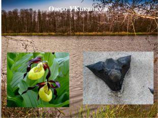 Озеро УКпканкуль У каждого озера есть свои особенности, Упканкуль - не исключ
