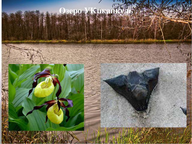 Озеро УКпканкуль У каждого озера есть свои особенности, Упканкуль - не исключ...