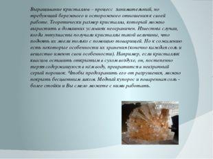 Выращивание кристаллов – процесс занимательный, но требующий бережного и осто