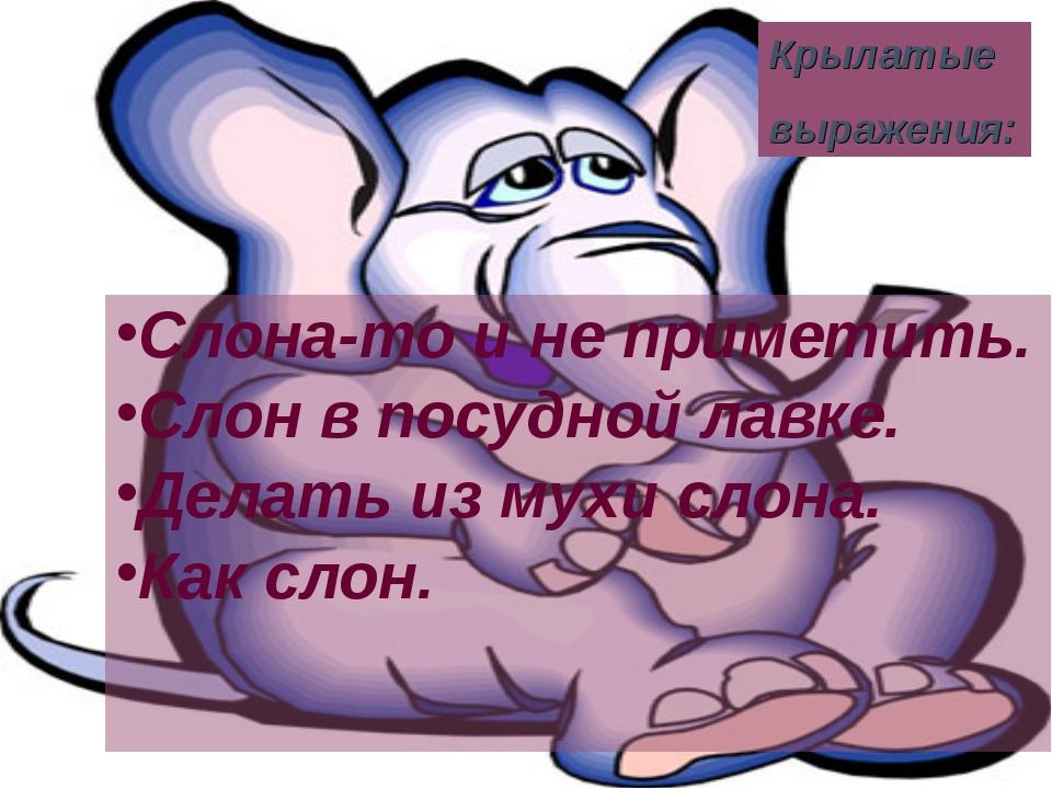 Слона-то и не приметить. Слон в посудной лавке. Делать из мухи слона. Как сло...