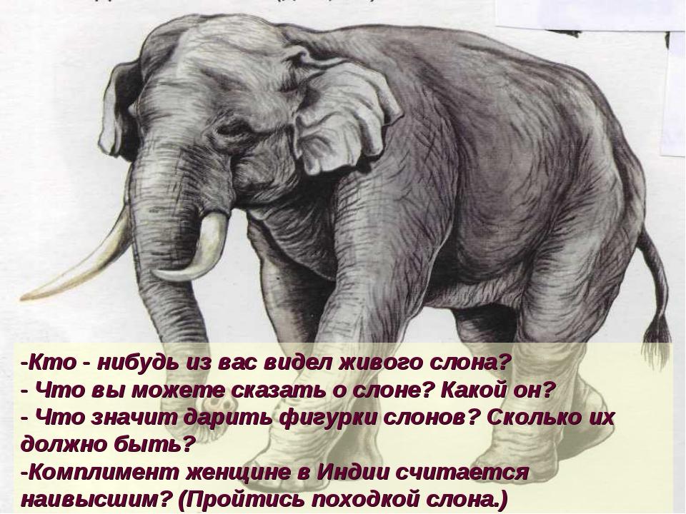 Конспект урока как слона лечили по в. коржикову