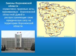 Законы Воронежской области - нормативно-правовые акты, принимаемые Воронежско