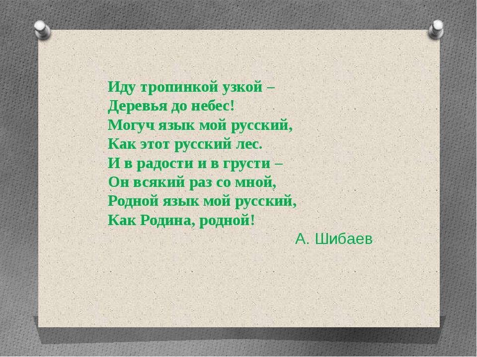 Иду тропинкой узкой – Деревья до небес! Могуч язык мой русский, Как этот русс...