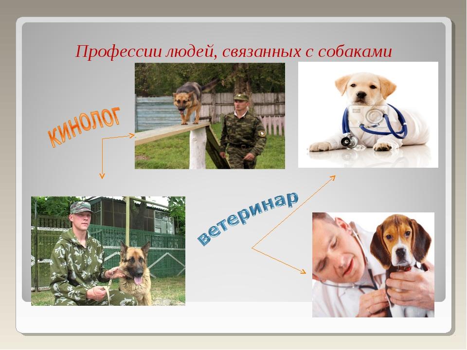 Профессии людей, связанных с собаками