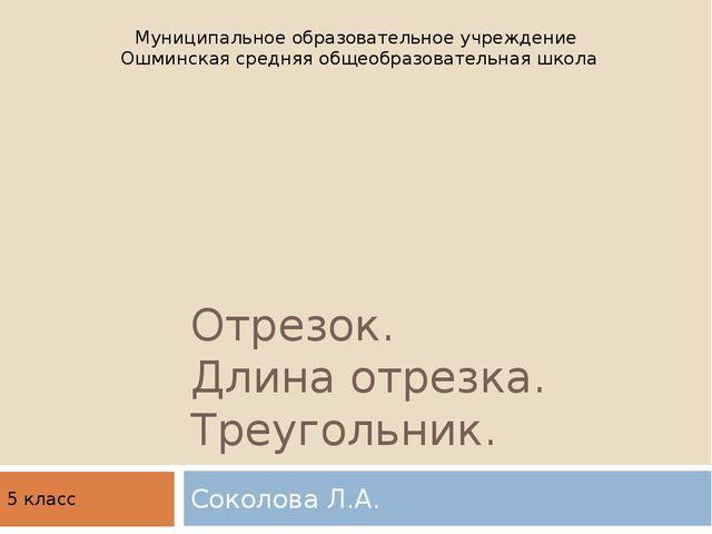 Отрезок. Длина отрезка. Треугольник. Соколова Л.А. Муниципальное образователь...