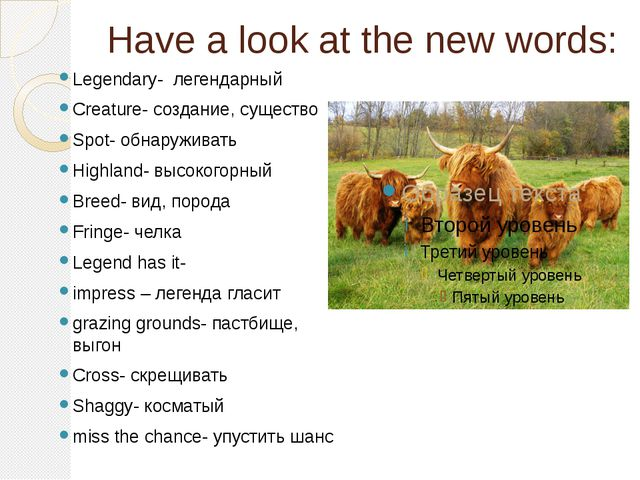 Have a look at the new words: Legendary- легендарный Creature- создание, суще...
