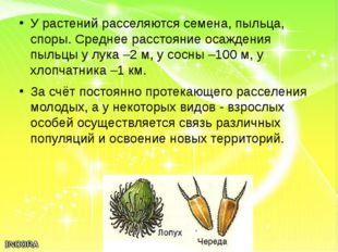 У растений расселяются семена, пыльца, споры. Среднее расстояние осаждения пы