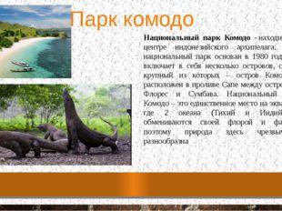 Парк комодо Национальный парк Комодо -находится в центре индонезийского архи