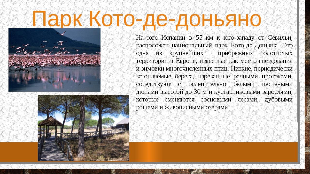 Парк Кото-де-доньяно На юге Испании в 55 км к юго-западу от Севильи, располож...
