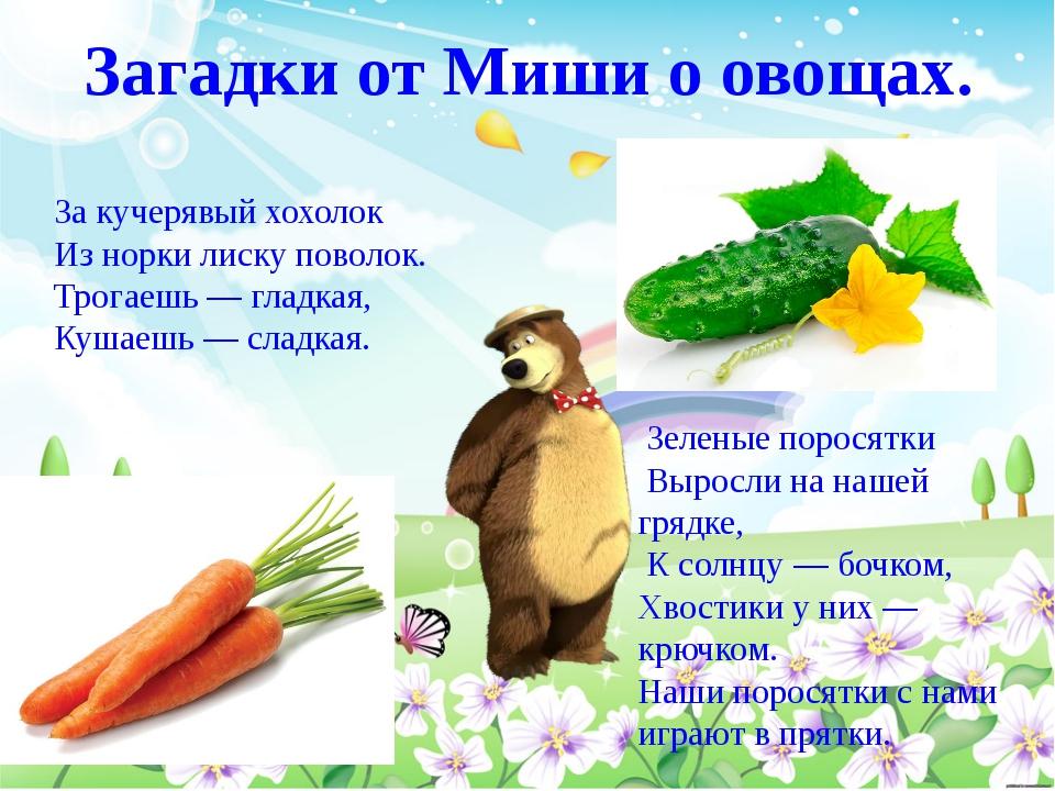 Загадки от Миши о овощах. За кучерявый хохолок Из норки лиску поволок. Трогае...