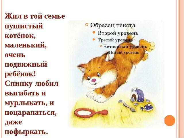 Жил в той семье пушистый котёнок, маленький, очень подвижный ребёнок! Спинку...