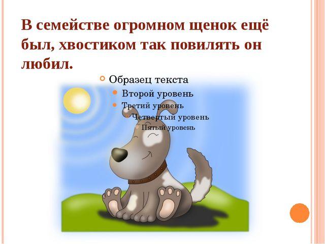 В семействе огромном щенок ещё был, хвостиком так повилять он любил.