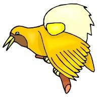 BIRD577