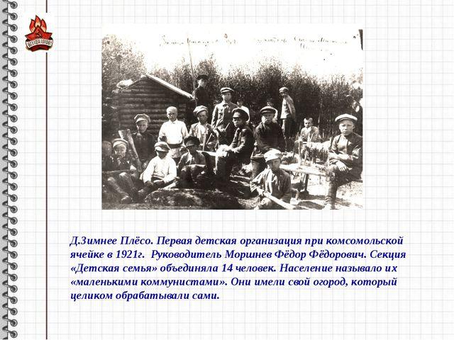 Д.Зимнее Плёсо. Первая детская организация при комсомольской ячейке в 1921г....