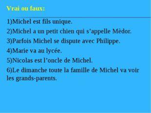 1)Michel est fils unique. 2)Michel a un petit chien qui s'appelle Mèdor. 3)Pa