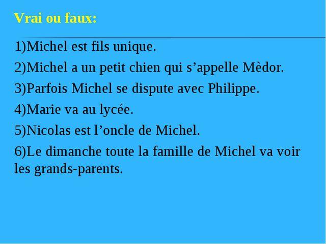 1)Michel est fils unique. 2)Michel a un petit chien qui s'appelle Mèdor. 3)Pa...