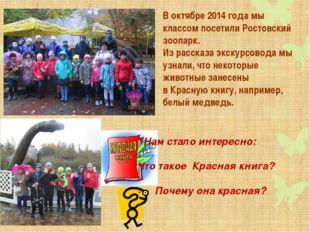 В октябре 2014 года мы классом посетили Ростовский зоопарк. Из рассказа экску