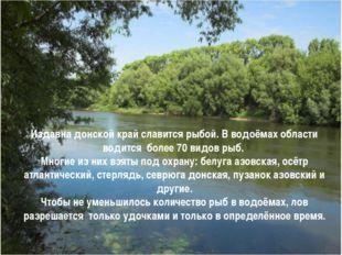 Издавна донской край славится рыбой. В водоёмах области водится более 70 видо