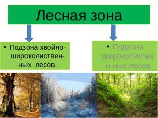 Лесная зона Подзона хвойно-широколиствен-ных лесов. Подзона широколиствен-ных