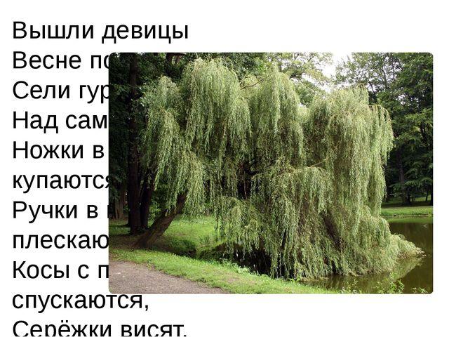 Вышли девицы Весне подивиться, Сели гурьбой Над самой водой: Ножки в речке ку...