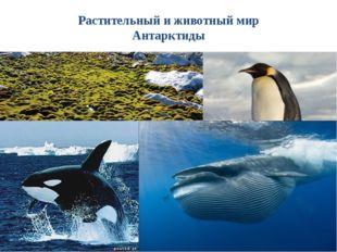 Тесты по теме «ГП. Открытие и изучение Антарктиды» По площади материк занима
