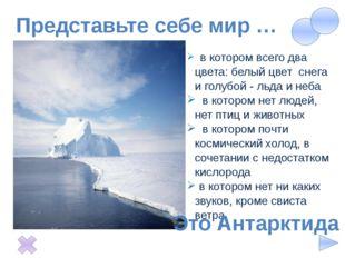 Представьте себе мир … в котором всего два цвета: белый цвет снега и голубой