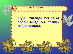 №7 қоспа Суық тигенде 2-3 сағат аралығында 5-6 тамшы пайдаланады.