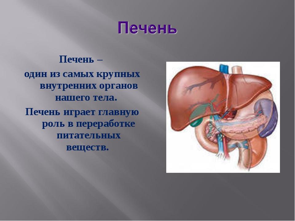 Печень – один из самых крупных внутренних органов нашего тела. Печень играет...