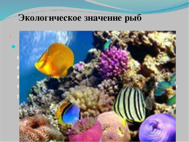 . Из приблизительновидов костистых рыб, обитающих на нашей планете, жизнь 6-8...