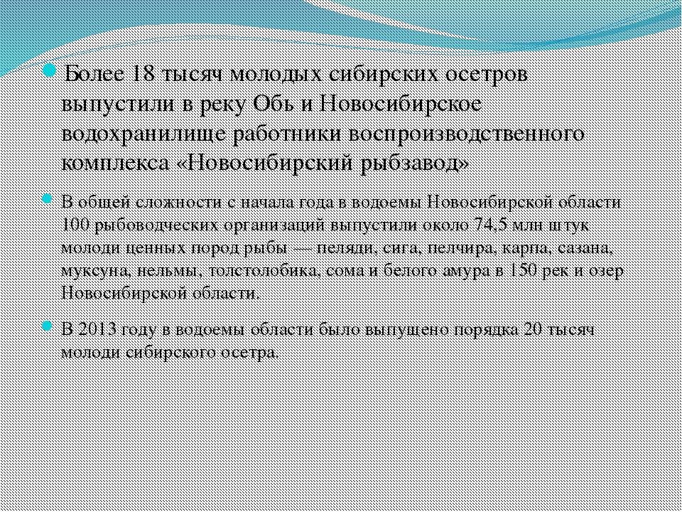 Более 18 тысяч молодых сибирских осетров выпустили в реку Обь и Новосибирско...