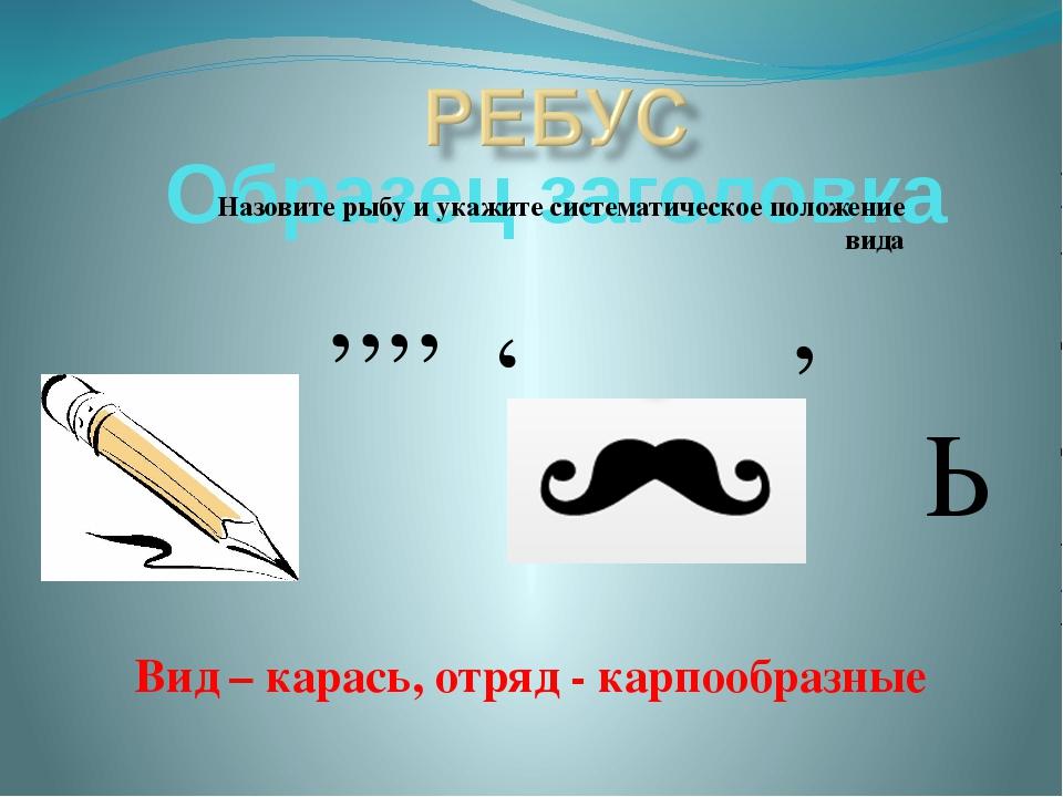 Назовите рыбу и укажите систематическое положение вида Ь ,,,, , , Вид – карас...