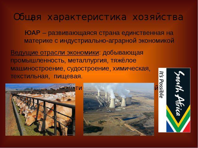 Общая характеристика хозяйства ЮАР – развивающаяся страна единственная на мат...