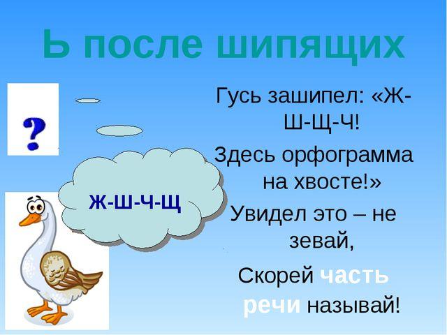 Ь после шипящих Гусь зашипел: «Ж-Ш-Щ-Ч! Здесь орфограмма на хвосте!» Увидел э...