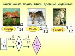 Какой кошке поклонялись древние индейцы? Ягуар 5