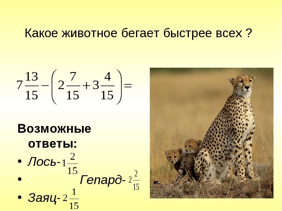 Какое животное бегает быстрее всех ? Возможные ответы: Лось- Гепард- Заяц-