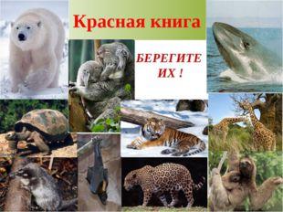 Красная книга БЕРЕГИТЕ ИХ !