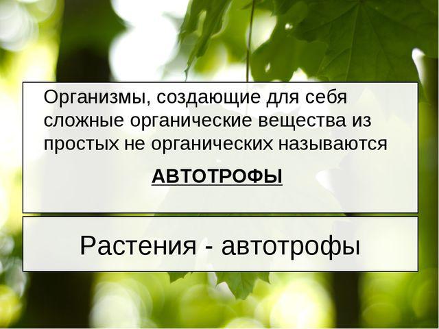 Организмы, создающие для себя сложные органические вещества из простых не ор...