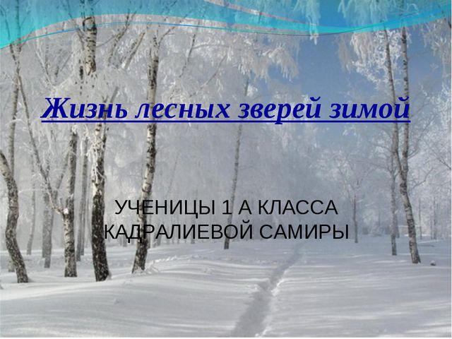 Жизнь лесных зверей зимой УЧЕНИЦЫ 1 А КЛАССА КАДРАЛИЕВОЙ САМИРЫ