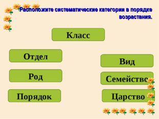 Расположите систематические категории в порядке возрастания. Класс Царство От