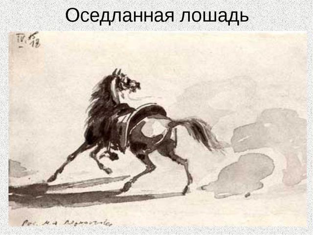 Оседланная лошадь