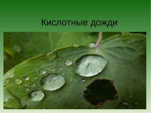 Кислотные дожди
